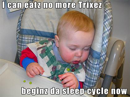 I can eatz no more trixez. Beginz da sleep cycle now.