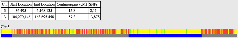 Chromosome matching screenshot