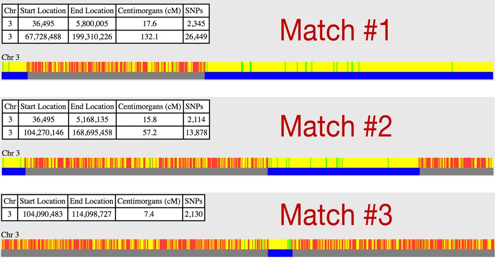 Chromosome 3 displays for three possible matches.